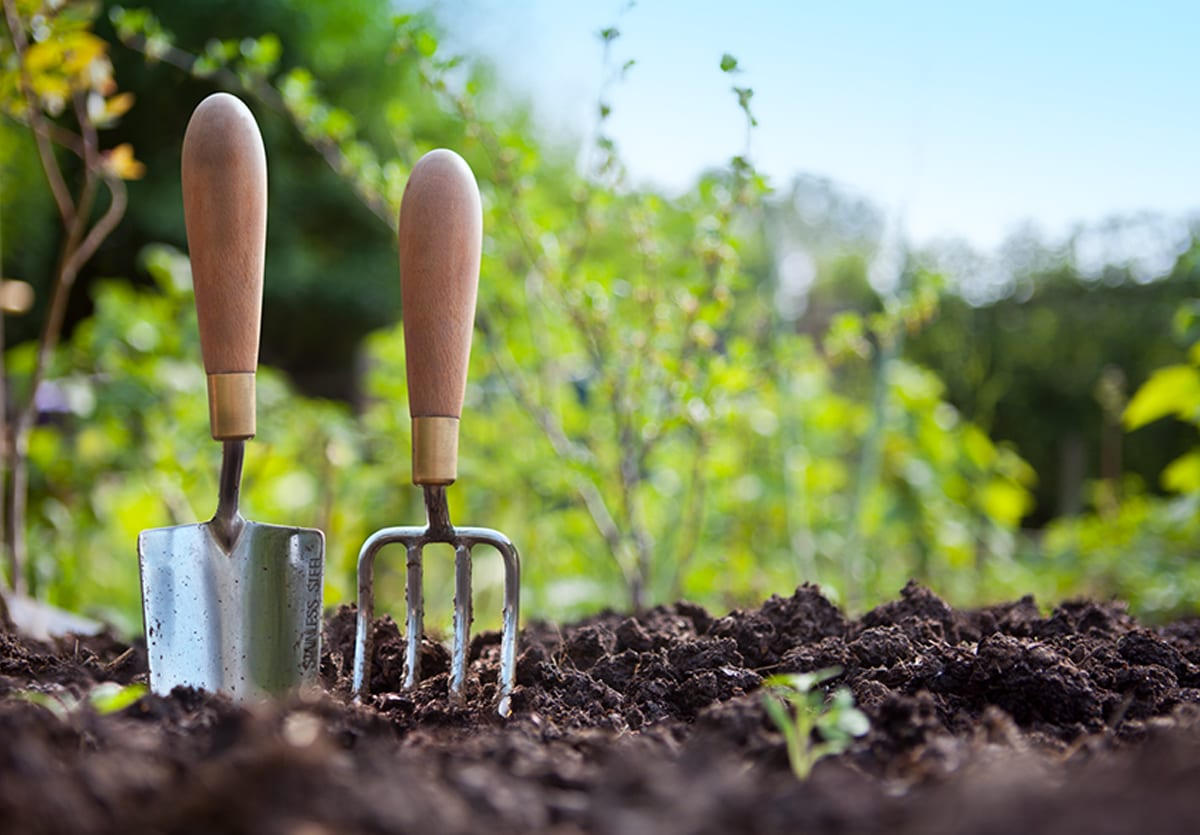 Close up of a hand trowel and spade in soil