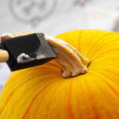 mod podge on pumpkin stem