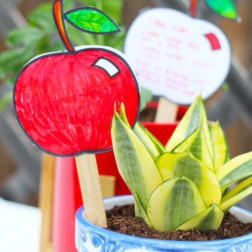 back to school apple plant tags